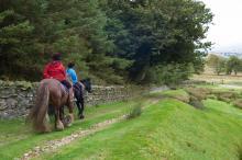 Hamsterley Packhorse Trail © NPAP/Charlie Hedley