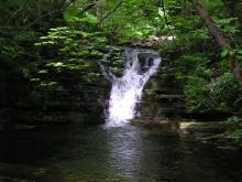 Slitt Wood waterfall © NPAP/Elizabeth Pickett