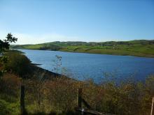 Grassholme Reservoir © NPAP/Simon Wilson