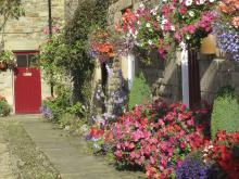 Blanchland in bloom © NPAP/Shane Harris
