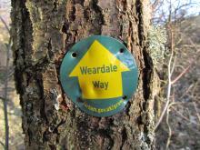 Weardale Way marker © NPAP/Gearoid Murphy